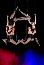 4 performers on trapeze